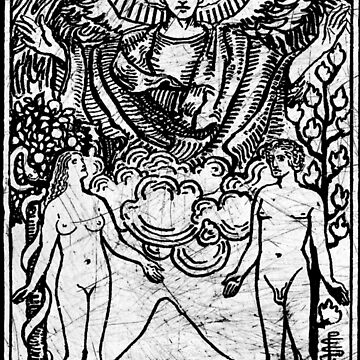 La carta del Tarot de los Enamorados - Arcanos Mayores - adivinación - oculta de createdezign
