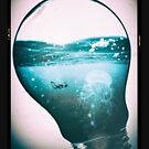 Jellyfish Underwater Lightbulb by Weldon Fultz