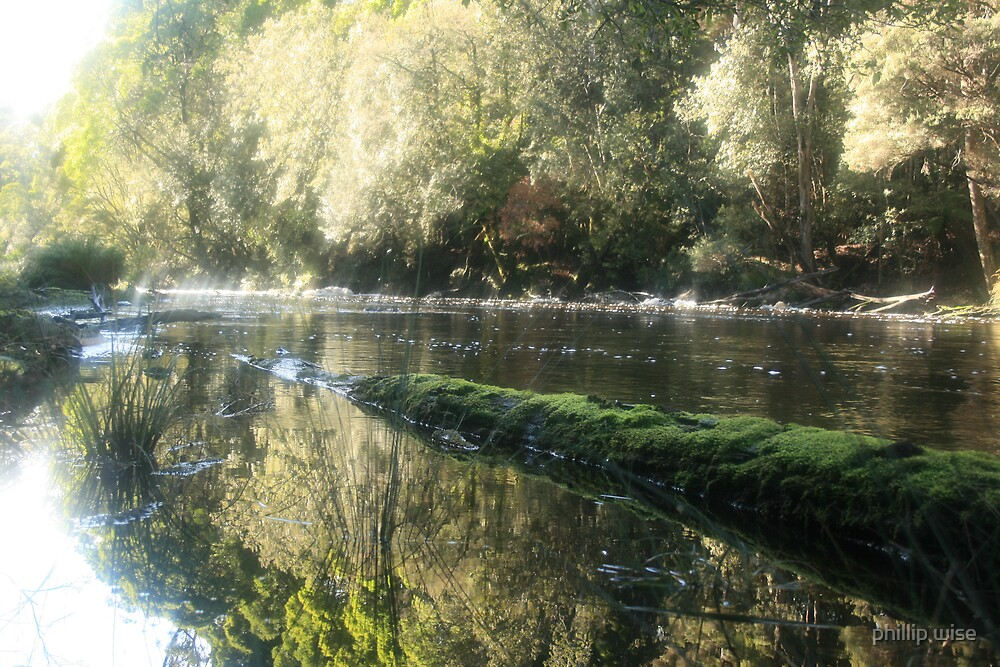 black river in the tarkine by phillip wise