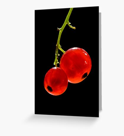 Red Currants Greeting Card