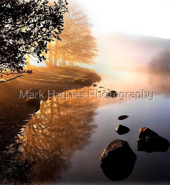 Morning Light by Mark Haynes Photography