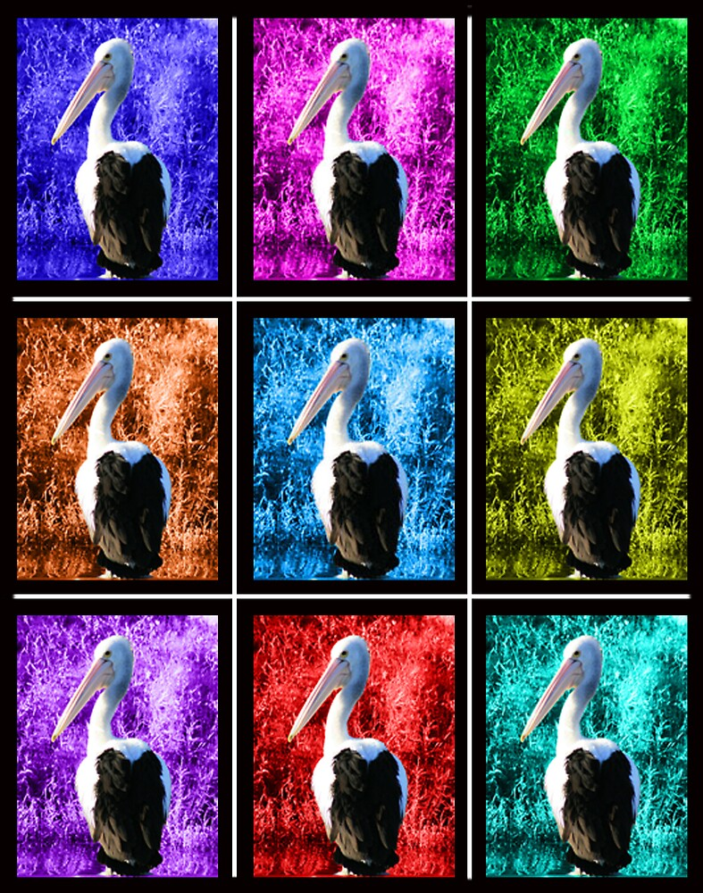 Pop Art Pelicans by OzShell