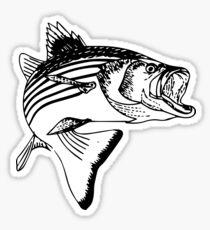 Striped Bass Sticker