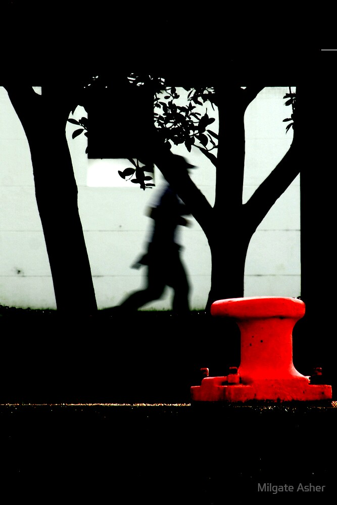 Red Runner by Milgate Asher