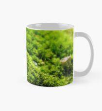 small toxic mushrooms in the moss closeup Mug