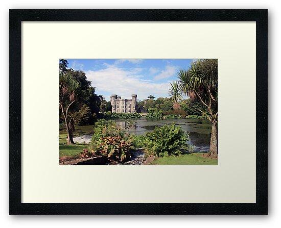 Johnstown Castle  by John Quinn