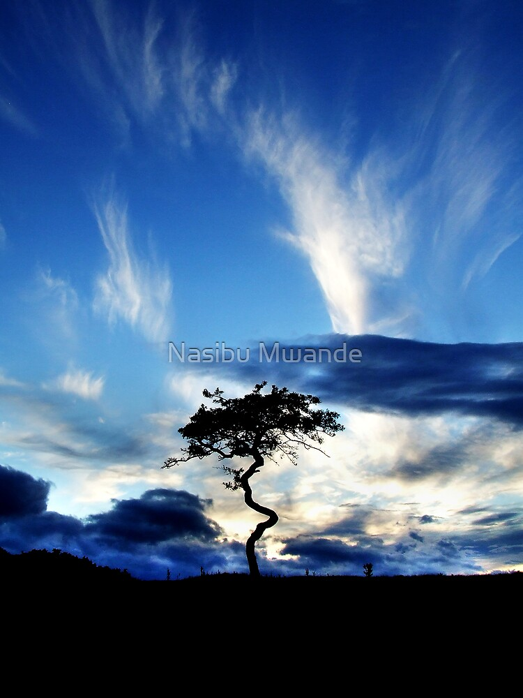Another Day is Gone by Nasibu Mwande