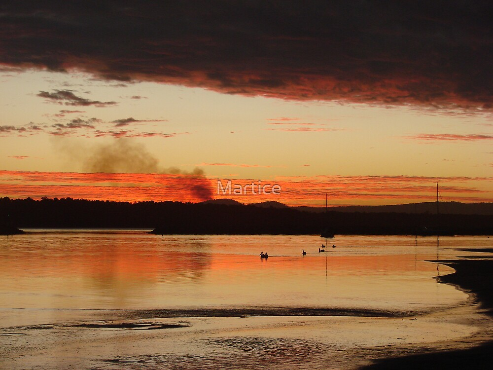 Raging Red Cane Fire Sunset by Martice