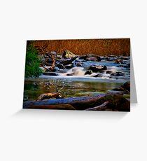 """Along the Cumberland River"" Greeting Card"