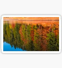 autumn forest reflection in lake Sticker