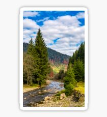 autumnal landscape with river in spruce forest Sticker