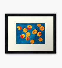 Orange apricots Framed Print