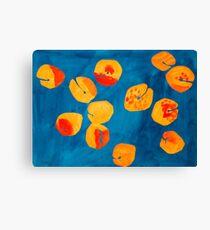 Orange apricots Canvas Print