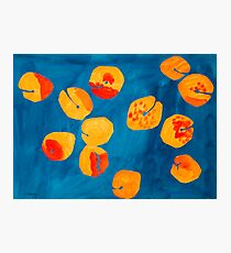 Orange apricots Photographic Print
