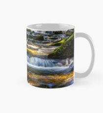forest stream  splashes on the rock cascade Mug