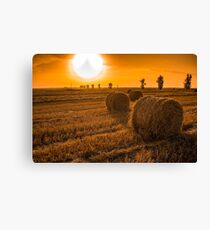 Hay Bales on a Field at Sunset Canvas Print