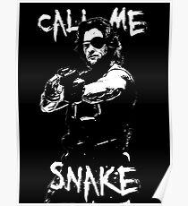 call me Snake Poster