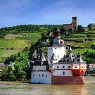 Burg Pfalzgrafenstein by Tom Gomez