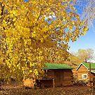 Lonely Dell Ranch, Arizona by Tamas Bakos