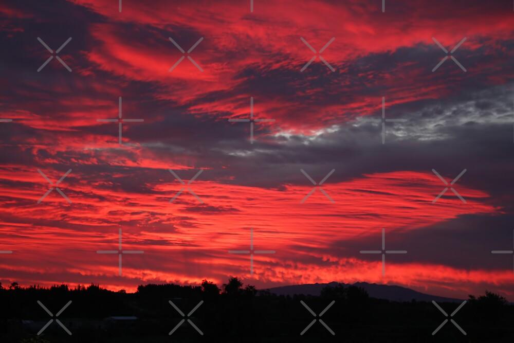 Burnt By The Sun by Varinia   - Globalphotos