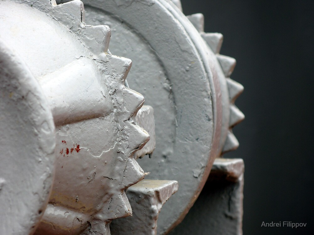 Gear by Andrei Filippov