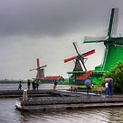 Windmills on the River Zaan by Tom Gomez