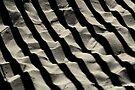 Sandy shadows by Miron Abramovici