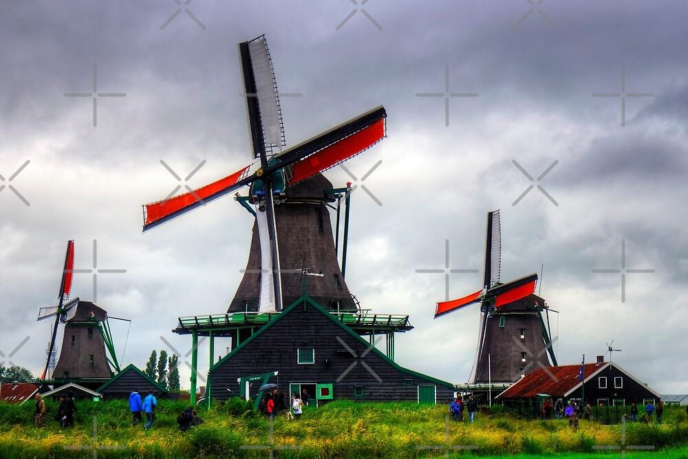 Windmills at Zaanse Schans by Tom Gomez