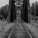 Talkeetna Rail Bridge by John  Kapusta