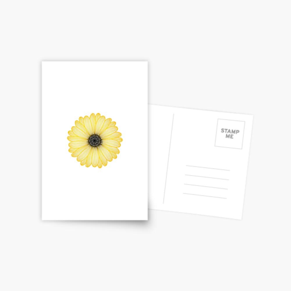 Gelbes Gänseblümchen Postkarte