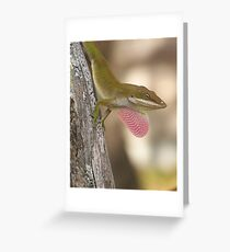 ANOLE ~ Showing Off Greeting Card