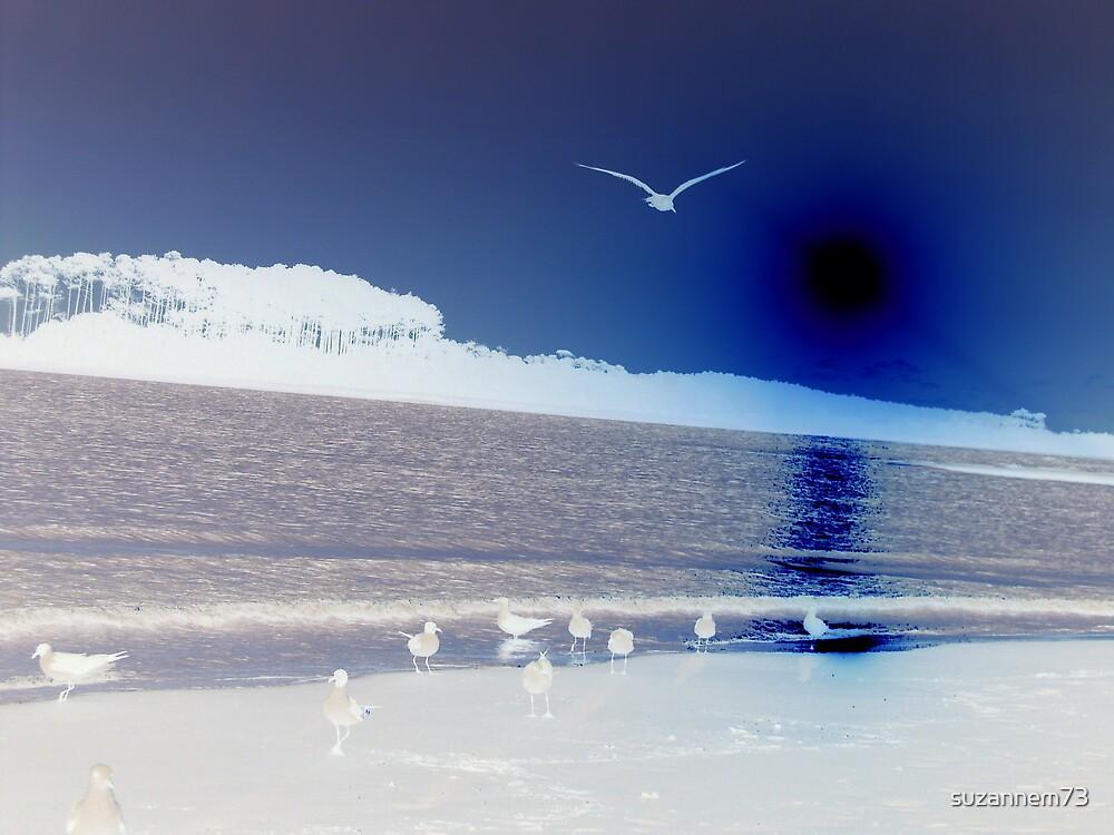 Morning Flight by suzannem73