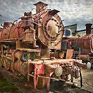 Steam Trains by Stuart Row