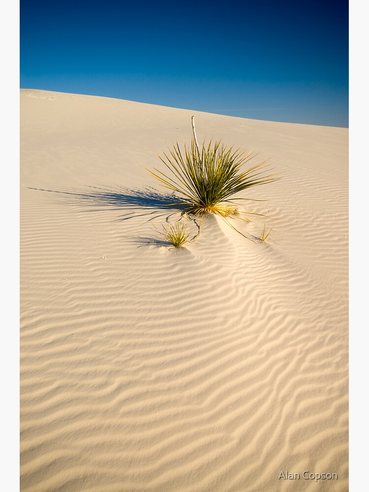 White Sands National Monument. by AlanCopson