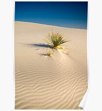White Sands National Monument. Poster