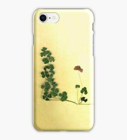 Golden Clover Dreams iPhone Case/Skin