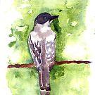 swallowtail by RavensLanding