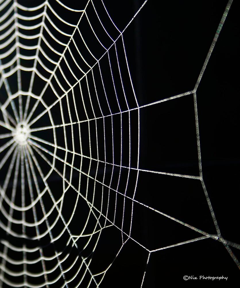 Spider Work  by Nix76