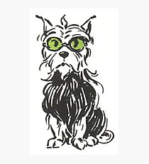 toto drawing photographic prints redbubble