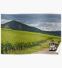 Little White Train in Alsace Wine Route Poster