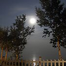 Foggy Moon over the river by Carole Boudreau