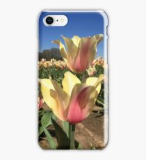 Matching Tulips iPhone Case/Skin