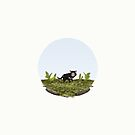 Sarcophilus harrisii 'Tasmanian devil' by Sam Lyne