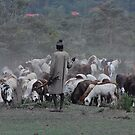 Goat Herder by Rick Olson