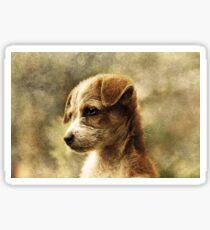 Irresistible Adorable Puppy Sticker