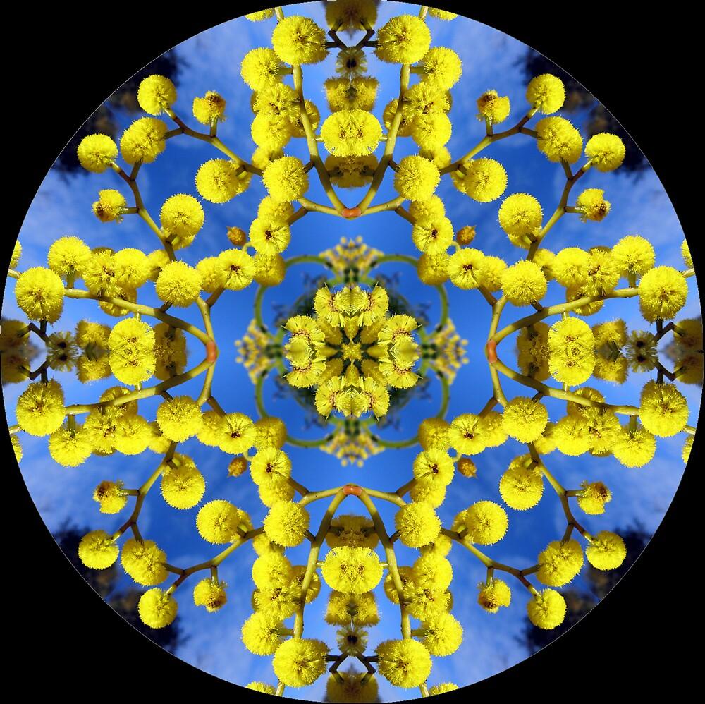 mandala of wattle flowers by SarahTrangmar