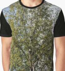 Birch tree with green foliage against a blue sky with clouds Graphic T-Shirt