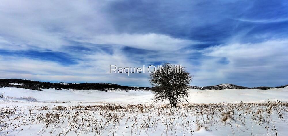 A Lone Tree by Raquel O'Neill