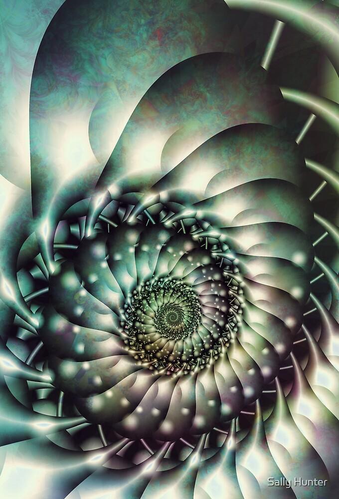 Spiralling by Sally Hunter