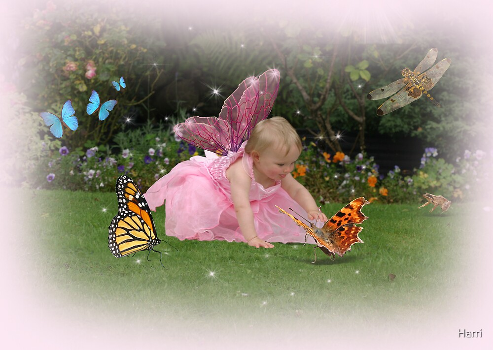 Holly meets a butterfly by Harri